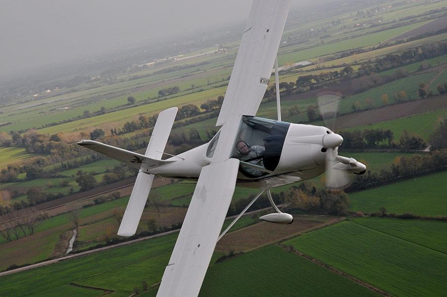4-P92-eaglet