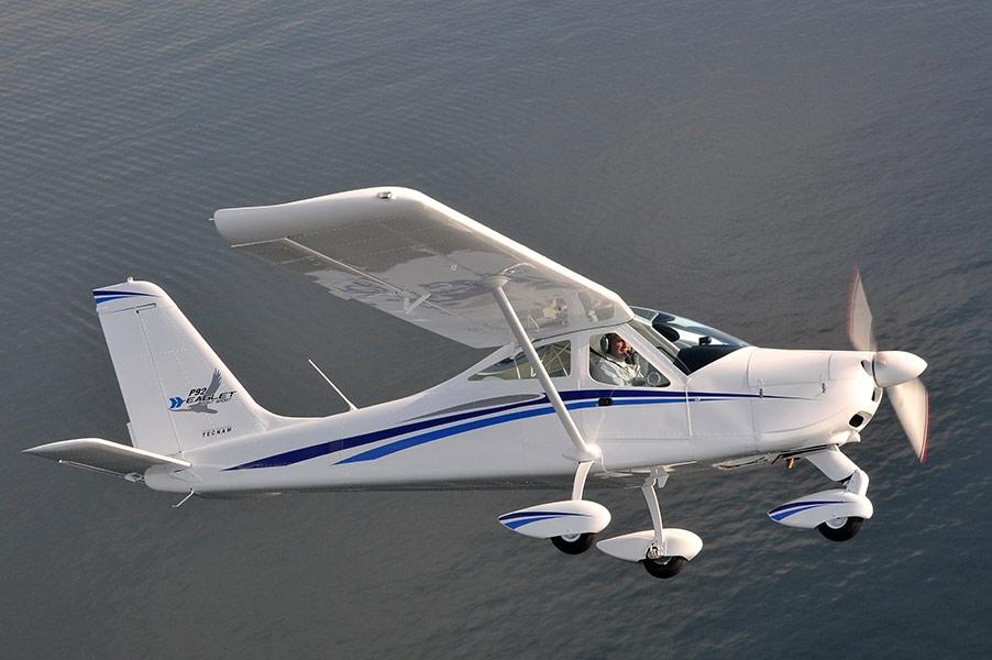 6-P92-eaglet