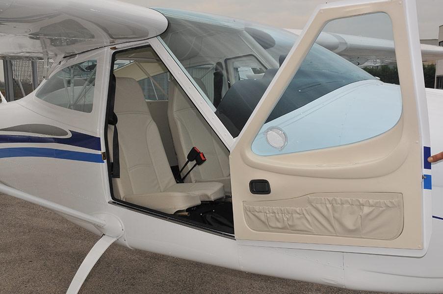 9-P92-eaglet1
