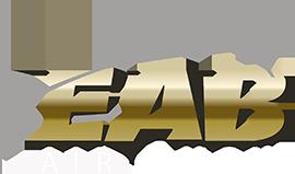 EAB AIR SHOW 2016